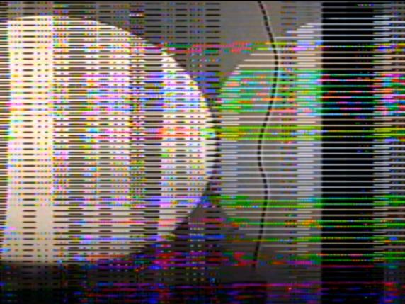 También los pequeños muerden (2021) Video color, 33'